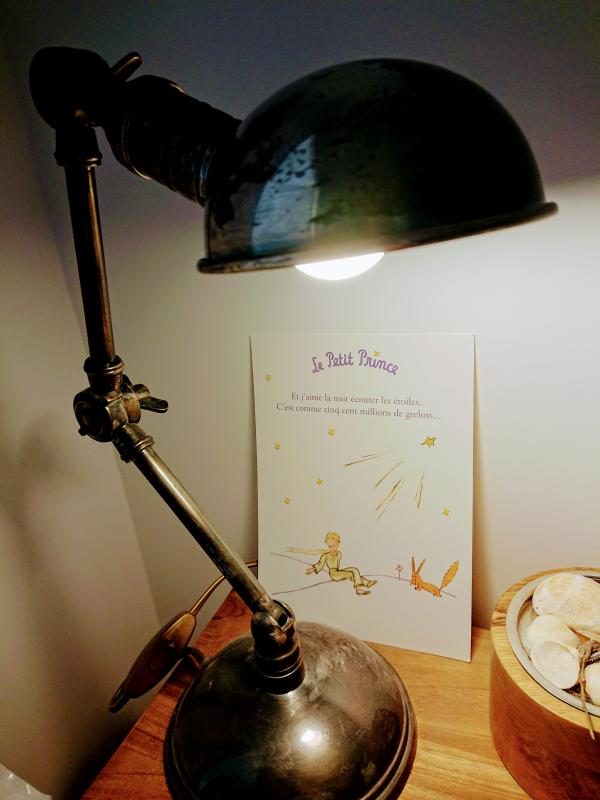 Lámpara de doble brazo plateada