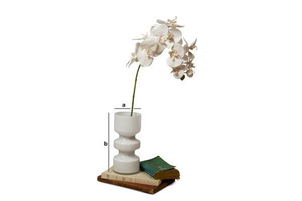 Dimensiones del producto Florero de vidrio Ella