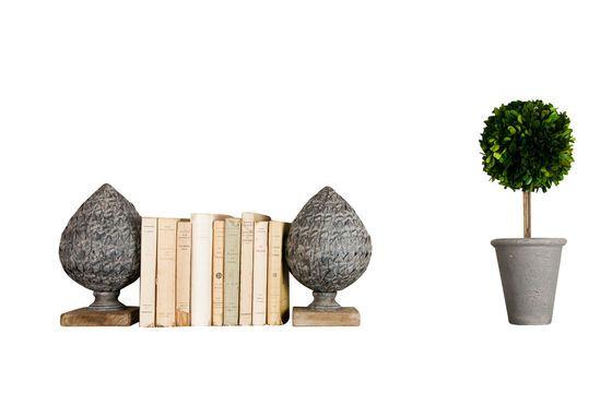 Ornamento de pino en forma de cono Clipped