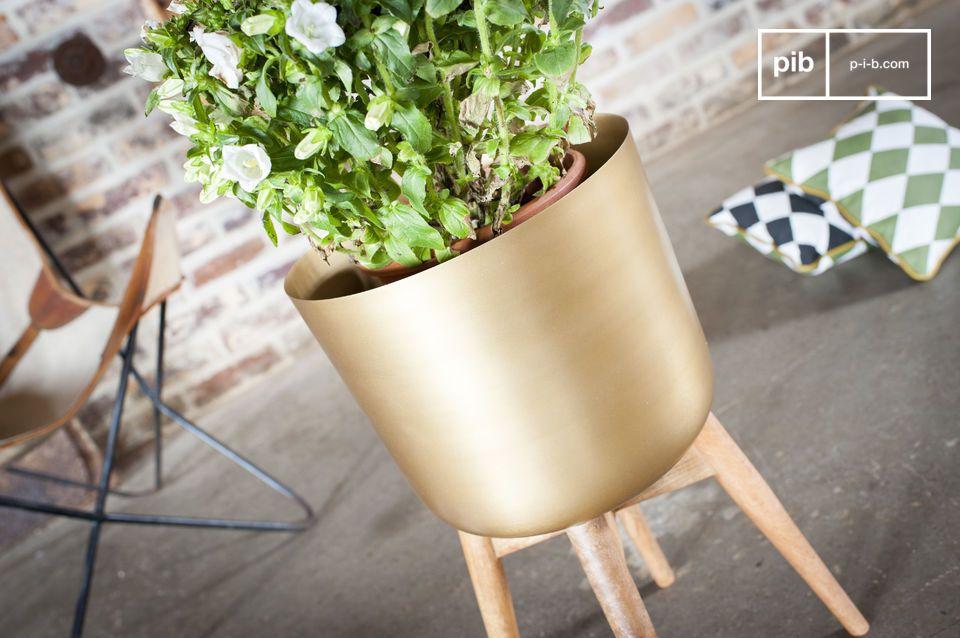 Un objeto decorativo y de moda para realzar sus plantas
